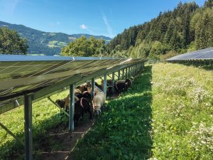 Die neue Informations-Broschüre des PV Austria verdeutlicht Vielfalt der Sonnenstromerzeugung in der Landwirtschaft.